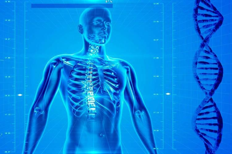 Les données médicales en réseau, source d'innovation | 22/02/2065