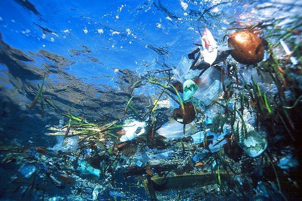 Garbage Island peut-elle être une réserve naturelle ? | 18/12/2067