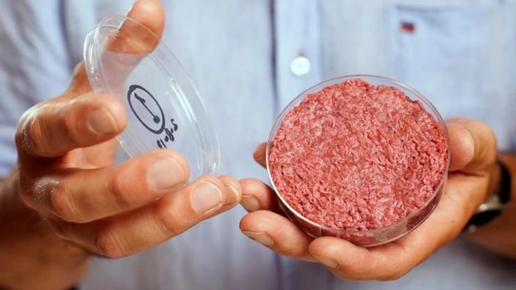 Viande artificielle | Un marché croissant en situation insulaire | 04/08/2049